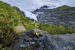 Worthington Glacier Trail (Alfred J. Lockwood Photography) Tags: alfredjlockwood nature landscape glacier mountain chugachmountains worthingtonglacier thompsonpass morning summer rock cloud
