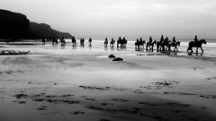 DSCF6734_1 (sffubs) Tags: fuji fujifilm fujifilmx100s x100s bibble bibblepro bibble5 bw blackandwhite andrea landscape horse nolton druidston beach riding 2016 holiday hazy monochrome outdoor shore sand sea seaside