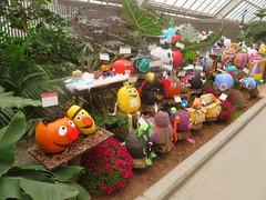 pumpkins (GEO_Matt) Tags: montreal quebec kanada canada biosphere halloween pumpkins cubes habour tour de lhorolge urlaub holiday october rain weather
