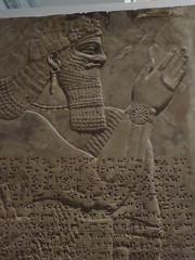 Guardian Spirit (Aidan McRae Thomson) Tags: nimrud relief sculpture assyrian mesopotamia britishmuseum london