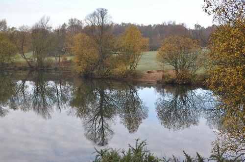 Reflections at Broome Pits