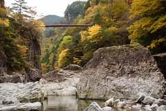 26Mitarai Valley (anglo10) Tags:   japan    valley  bridge  autumnleaves