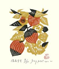 Japanese-lantern (Japanese Flower and Bird Art) Tags: flower japaneselantern physalis alkekengi solanaceae rei morimura modern woodblock print japan japanese art readercollection