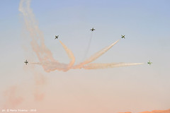 201001_ALAIN_DUE_43 (weflyteam) Tags: wefly weflyteam baroni rotti piloti disabili fly synthesis texan airshow al ain emirati arabi uae