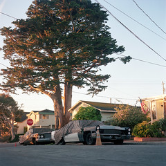 (patrickjoust) Tags: pacificgrove california mamiyac330s sekor80mmf28 kodakportra400 tlr twin lens reflex 120 6x6 medium format film analog mechanical patrick joust patrickjoust northern ca usa us united states north america estados unidos autaut color c41 car auto automobile vehicle parked covered tree house home