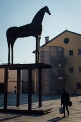 Modena, 2015 (Antonio_Trogu) Tags: italia italy emilia emiliaromagna modena mata mimmo palladino cavallo horse statua statue scultura sculpture donna woman streetphotography candid urban antoniotrogu nikonafs35mm18 nikond3100 2016