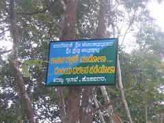 Shri Jenukallamma Temple, Ammana Ghatta Photography By CHINMAYA M.RAO  (26)
