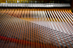 Smooth Sound (The Other Bowtie) Tags: keys pattern piano instrument strings inside