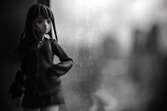 Shibuya Rin (KoolBeep) Tags: zeiss toy photography general sony carl za distagont224