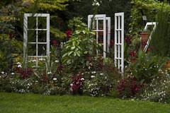 Parc de la marie  Reims (sebastienloppin) Tags: flowers fleur fleurs plante jardin flektogon extrieur parterre carlzeiss czj treillage ausjenaflektogon2835