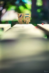 Together forever (Art by Vins) Tags: cute nature canon toy toys actionfigure photography bokeh 100mm kawaii 5d pepsi 28 tamiya yotsuba danbo revoltech danboard 5dmarkii 5dmkii