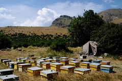 Batabat (Naxvan, Azerbaijan) - Bee Farm (Danielzolli) Tags: mountain berg montagne landscape bees border paisaje azerbaijan tent bee berge paysage landschaft zelt montanhas fjell montaas gebirge gory bienen grenze dalar hory  fjll fjall planina aserbaidschan pejsaz  azerbaycan azrbaycan azrbaycan gebirgskette montaignes nakhchivan nakhichevan naxcivan  azerbaiyan batabat  nachitschewan pcelarstvo naxvan pcely aserbaigian