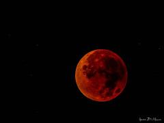 Eclipse de lune (yann.dimauro) Tags: france lune eclipse fr rousse rhone rhnealpes givors