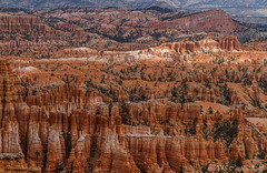 The Hoodoos of Bryce (GNPlover) Tags: park rock canon landscape utah canyon formation national bryce hoodoos