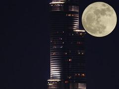 supermoon with burj khalifa (Tammam85) Tags: supermoon dubai burj khalifa