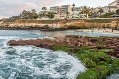 La Jolla Cove (mojave955) Tags: ocean california ca usa beach america canon pacific sandiego cove unitedstatesofamerica lajolla pacificocean socal southerncalifornia orangecounty westcoast tidepool tidalpool lajollacove   600d  eos600d rebelt3i