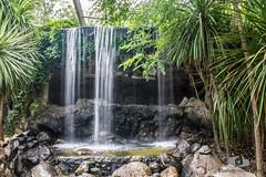 Cascada (Anthony Einseinhein) Tags: cascada temaiken