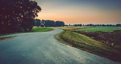 Around the corner (Ingeborg Ruyken) Tags: 2016 500pxs empel kanaalpark boom dijk dropbox dyke flickr meadow morning natuurfotografie ochtend road september summer sunrise tree weg weiland zomer zonsopkomst