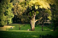 Ogród Saski - Lublin (michal.stypulkowski) Tags: lublin ogród saski lubelszczyzna