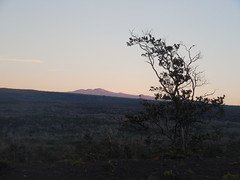 Sunrise over Mauna Kea (jimmywayne) Tags: sunrise hawaiicounty hawaii volcanoes nationalpark bigisland maunakea highest highpoint