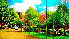 14242266_1088326477883608_8777228798440884008_o (gesielfreire) Tags: city cidade park collor paisage beauty