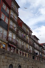 DSC04605 (nomiegirardet) Tags: porto portugal europe water douro bird goelan house old red sky river blue wine food wall yellow azulejos faence