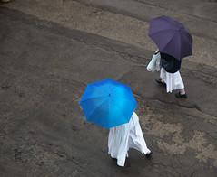 dall'alto dei Cieli (fabia.lecce) Tags: streetshot streetphotography ombrello umbrellas shopping italy sacred sisters rain autumn people