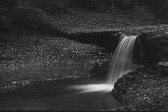 Wintergreen Gorge (seanvitanyi) Tags: noir d76 iso50 f1 erie hoya exposure gorge polarizer canon fall waterfall