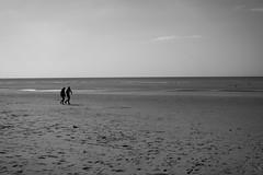 La baie de Somme (Justine_photographie) Tags: picardie somme baie mer eau sable people personnes duo couple lovers amoureux cote