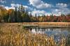 Colourful Days (Knarr Gallery) Tags: color autumn leaves trees fall pond reeds reflection marsh muskoka huntsville rosseau sky clouds knarrgallery nikon d300 topaz nikon18200mmvriiafs darylknarr knarrphotography