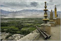 Vallee de Leh (2005) (jacques-tati) Tags: valley valle leh ladakh india