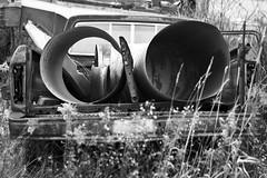 Tail Pipe (cjb_photography) Tags: junkyard mcleansautowreckers miltonon rust truck
