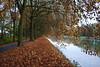 St-Huibr-Lille 161110 31 (KB3680) Tags: sinthuibrechtslille neerpelt limburg valleienvandommelenwarmbeek lagekempen rllk kanaalbocholtherentals jaagpad kanaal platanen kempen