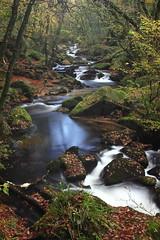 Golitha Falls [Explored] (Richard D Porter) Tags: cornwall 550d canon golithafalls water longexposure trees landscape uk england hoya28mmf28 nd8 explored explore
