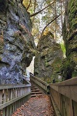 Jacob's Ladder (Note-ables by Lynn) Tags: outdoor hiking brucetrail ontario provincialparks monocliffsprovincialpark staircase woodenstairs walkway jacobsladder