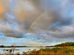 Rainbow over lake HDR 20161125 (Kenneth Cole Schneider) Tags: florida miramar westbrowardwca
