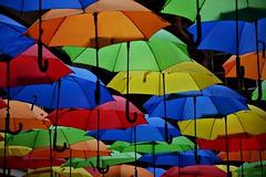 Monsoon (nagyistvan8) Tags: nagyistván kassa kosice felvidék szlovákia slovakia slovensko monsoon esernyő umbrella színek colors nagyistvan8 háttérkép background kék zöld narancs sárga fekete piros blue green orange black yellow red object tárgy ősz autumn design 2016 nikon ngc