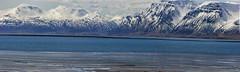 North Iceland's coast is dressed in stripes (lunaryuna) Tags: iceland northiceland saudarkrokr coast sea seascape landscape mountainrange coastallagoon tidallagoon landscapeabstract striations mountains spring season seasonalchange panorama stitchedpano natureabstract lunaryuna