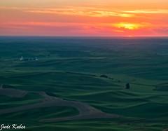 _MG_0090-2 (judikubes) Tags: palouse washington rollinghills farm sunset greenfield dirtroad judi kubes