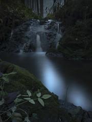 In the moonlight (frantiekl) Tags: stream forest woods light moonlight stones leaves night nature autumn fall dark herbs woodlant czechrepublic landscape waterfall outdoor serene