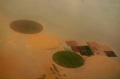 thirsty in the desert (1/3) (eriynali) Tags: sahara desert circles crops cropcircles sand water irrigation farm food roads arial