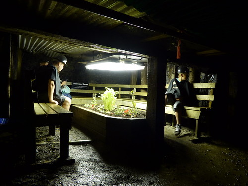 Miners' Museum - Underground Garden