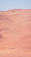 Mar de Dunas de Atacama (Jos L.Gutirrez) Tags: chile flowers sea cactus panorama naturaleza sun flores tourism sol beach nature birds fauna rural trekking canon relax landscape island penguins boat mar photo nationalpark fisherman sand flora waves foto photographer desert playa paisaje aves tourist arena photograph silence fox atacama rest desierto fotografia turismo caminata olas isla vacaciones zorro silencio pinguino descanso norte migrations oceano fotografo bote proteccion pescadores turista caleta pandeazucar parquenacional guanaco chaaral migraciones conservacion aislado t1i viewponit aislated