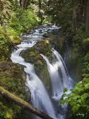 Sol Duc Falls (sking5000) Tags: park fall sol water washington falls national olympic duc