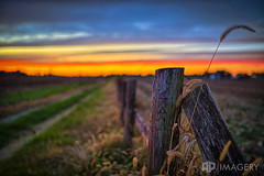Rural Sunset (AP Imagery) Tags: dof ky kentucky owensboro sunset country daviessco depthoffield driveway farm fence fencepost landscape rural