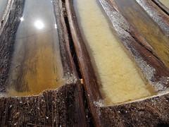 Récolte de sel