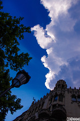 T R E E S // C L O U D S (smellerbee) Tags: barcelona street travel blue trees light sky holiday building lamp clouds wow europe touch scene chance boop crepuscular