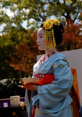 -38 (nobuflickr) Tags: japan kyoto maiko geiko       kamishichiken  kimobo kamigamojinjashrine  20151103dsc06542