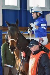 "2015-12-06 (23) r5 Xavier Perez on #7 Betty Brown Nose (JLeeFleenor) Tags: photos photography md marylandhorseracing marylandracing laurelpark jockey جُوكِي ""赛马骑师"" jinete ""競馬騎手"" dżokej jocheu คนขี่ม้าแข่ง jóquei žokej kilparatsastaja rennreiter fantino ""경마 기수"" жокей jokey người horses thoroughbreds equine equestrian cheval cavalo cavallo cavall caballo pferd paard perd hevonen hest hestur cal kon konj beygir capall ceffyl cuddy yarraman faras alogo soos kuda uma pfeerd koin حصان кон 马 häst άλογο סוס घोड़ा 馬 koń лошадь xman xavierperez maryland"