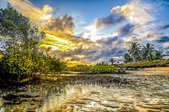 Early Morning - Natal (Brazil) (rqserra) Tags: morning brazil praia beach brasil strand landscape dawn agua alba playa paisagem amanecer aurora nuvens plage soe amanhecer coqueiros aube swit alvorecer morgendämmerung dageraad daggry gryning paccbet rqserra studio3photografia